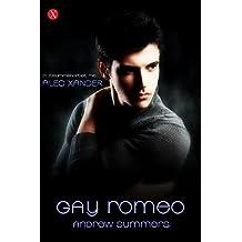 GayRomeo (Gay Lovestorys 2)