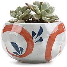 T4U Conjunto de 1 Arcilla de cerámica de Estilo japonés de Serie Red Grass Cerámicos Planta