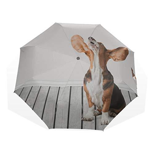 Reiseschirm A Basset Hound Mit Großen Ohren Anti Uv Compact 3-Fach Kunst Leichte Faltschirme (Außendruck) Winddicht Regen Sonnenschutzschirme Für Frauen Mädchen Kinder -