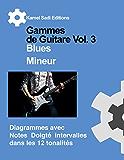 Gammes de Guitare Vol.3 Blues Mineur
