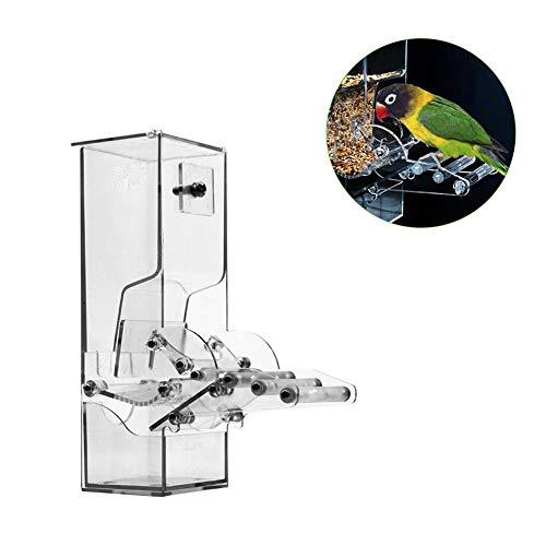 Mona43Henry Alimentador de Aves Acrílico Automático Loro Contenedor de Comida Semillas de forrajeo para Parrot Perico Canario Cockatiel
