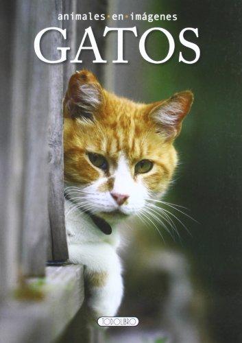 Gatos (Animales en imágenes)