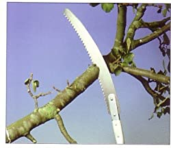 The Derby Pruning Saw
