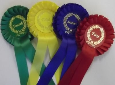 10 Sets of Single Tier rosettes, 1st-4th place, printed with your event name on the centre