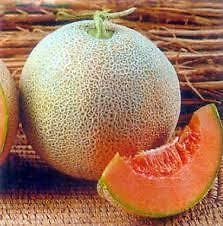 Seedscare Muskmelon Quality Seeds Imported- (Pack Of 20 Seeds) Nirupama
