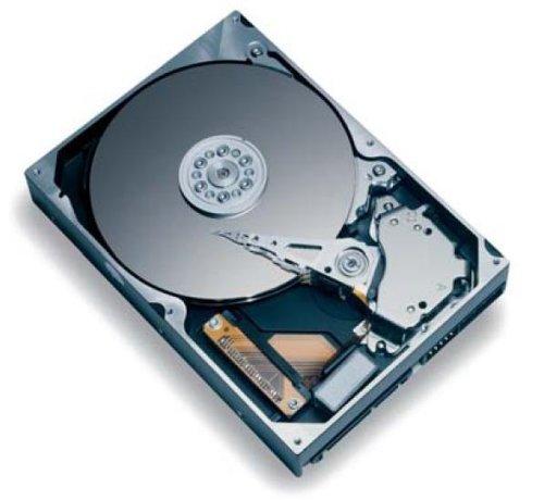 80gb 7200rpm Sata Festplatte (Maxtor 6Y080M0 DiamondMax Plus9 Festplatte intern 80GB 7200rpm S-ATA/150 8MB Cache (Bulk))