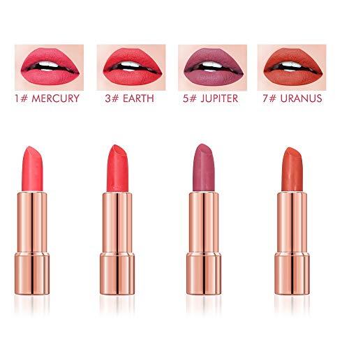 Lippenstift Set Wasserfest Lippenstift Matt Set Lipgloss Set Wasserdicht Lippenstift langer halt Feuchtigkeitsspendender Lippenstift soft 4 Farben