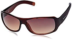 Fastrack Wrap Sunglasses (Brown) (P089BR2)