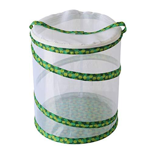 BANCHUN Mittleres Fass Grünes Blatt umhüllt Schmetterlingskäfig-Käfig-Insektenfutter zusammenklappbare Insektenkäfigbox