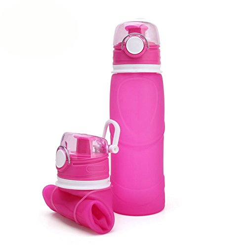 EFISH Foldable Sports Water Bottle - 25.6 oz - Eco Friendly & BPA Free Plastic For Running,Gym,Yoga,Outdoors and Camping - Fast Water Flow,Flip Top Opens Reusable with Leak proof Lid(Rose red)