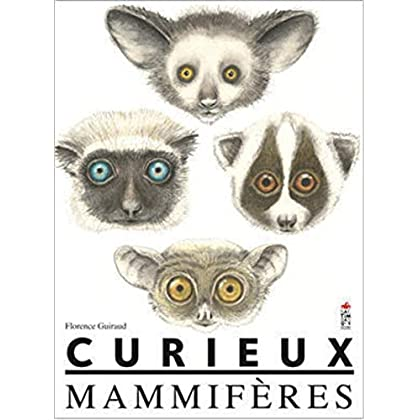 Curieux mammifères