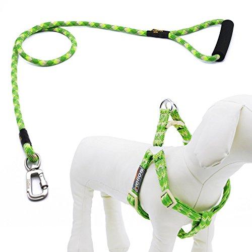 Helios Hundeleine mit Halsband und Clip, Hundegeschirr aus Nylon mit bequemem geschäumtem Griff, keine Zugkraft, mittelgroß, Grün