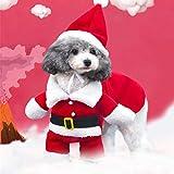 Edited Premium Süß Haustier Katze Hund Kleidung Kostüm Kleid Christmas Santa Claus Anzug Hund Katze Wintermantel Mit Turn-Down-Kragen für Halloween, Weihnachten, Party (S)