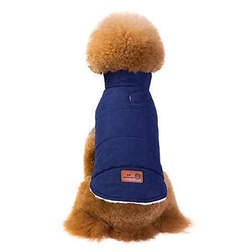 Amphia - für Katzen Pullover,Kleidung für Haustiere - Haustier-Hundewelpen-warme Winter-Baumwollkleidung Art und Weise Starke Weste Zwei-beinige Kleidung(Blau,L)