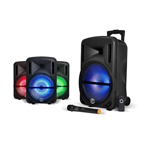 Enceinte 12' 500W DJOON MyDJ à LED RVB Mobile sur batterie Bluetooth USB SD Micro + Tél