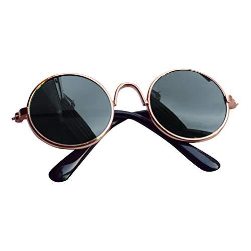 Le yi Wang You Fashion Sonnenbrille für Haustiere, Welpen, Katzen, Augenbrauen, Schutzbrille, Foto-Requisiten
