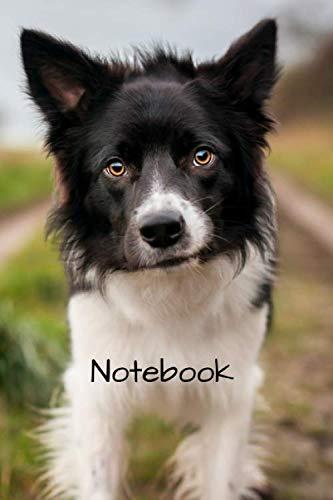 Notebook: 6