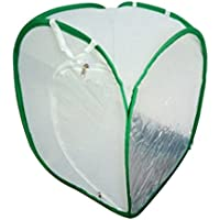 SGerste 2 couleurs Praying Mantis bâton insectes Papillon cylindrique pop-up Cage en maille filet – Blanc, 40 x 40 x 60 cm