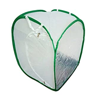 sgerste 2 colors praying mantis stick insect butterfly cylindrical pop-up cage mesh - white, 40 x 40x 60cm SGerste 2 Colors Praying Mantis Stick Insect Butterfly Cylindrical Pop-up Cage Mesh – White, 40 x 40x 60cm 41MBXykP8jL