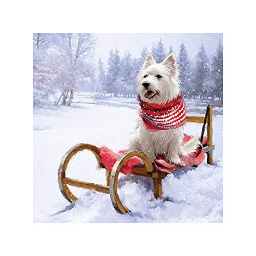 """Westie Schal Schlitten Schnee Weihnachten 13 \"""" x 13 \"""" 33cm x 33cm 20 x 3 PLY Papierservietten"""