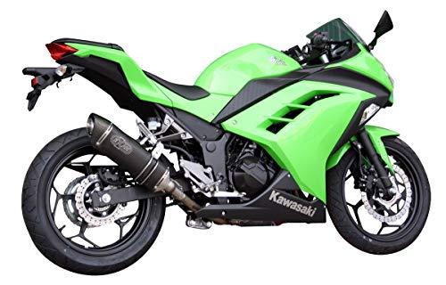 Endschalldämpfer Exan, oval, klassisch, für Kawasaki Ninja 300 - Finish, Edelstahl - Klassische Finish