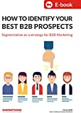 How To Identify Your Best B2B Prospects: Segmentation as a strategy for B2B marketing (English Edition)