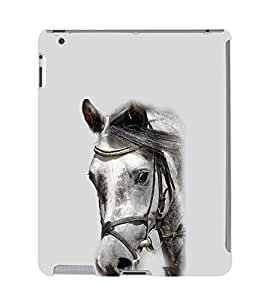 Ebby Premium Printed Back Case Cover With Full protection For Apple iPad 2 / Apple iPad 3 / Apple iPad 4 (Designer Case)