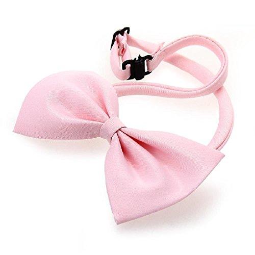 Haustier Hund Katze Bogen Krawatte Kragen Einstellbare Entz¨¹ckende nette Krawatte Sch?ne bowknot High Quality