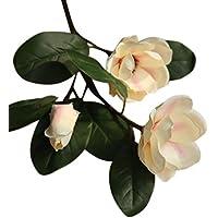 Decorazioni Natalizie Con Foglie Di Magnolia.Fiori Magnolia Piante E Fiori Artificiali Amazon It
