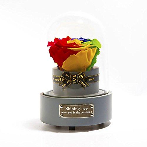 La boîte à musique,Constellation coloré rose Ornements de verre fleur immortelle Rose frais Le jour de noël Cadeau du nouvel an-H 4x6inch
