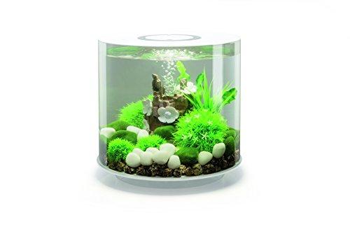 Oase biorb tube 15, acquario con illuminazione led multicolore, bianco