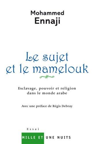 Le sujet et le mamelouk : Esclavage, pouvoir et religion dans le monde arabe