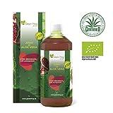 Best Los jugos de Aloe Vera - Green Frog. Jugo de Aloe Vera de Granada Review