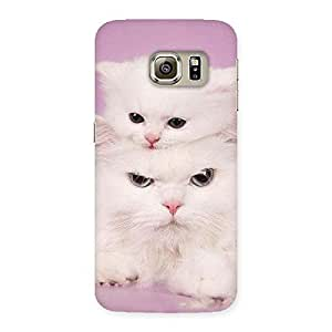 Special Kitten Family Back Case Cover for Samsung Galaxy S6 Edge Plus