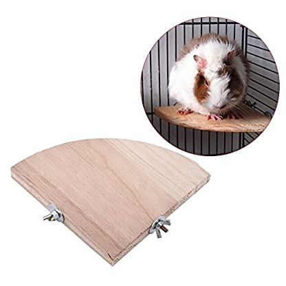 Fdit Platform Wood Bird Cage Perch Stand Fan Shape Parrot Hamster Small Animal Pet Budgie Toy(13 * 13Cm/5 * 5Inch) 8