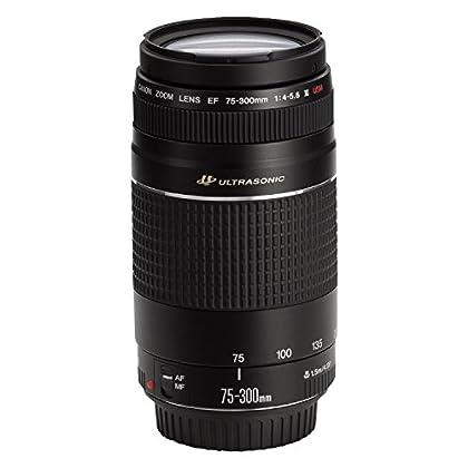 Canon EF 75-300mm f/4.0 - 5.6 III USM- Objetivo para Canon (distancia focal 75-300mm, apertura f/4-45, zoom óptico 4x,diámetro: 58mm) negro