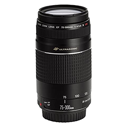 Canon EF 75-300 4-5.6 III Objektiv für EOS (58 mm