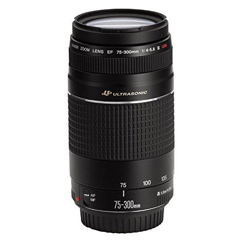 Canon EF 75-300 4-5.6 III Objektiv für EOS (58 mm Filtergewinde)