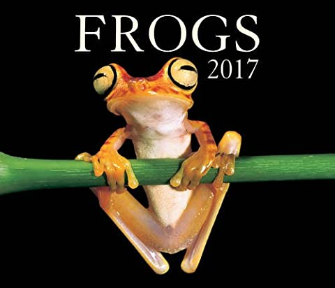 Frogs 2017 Calendar