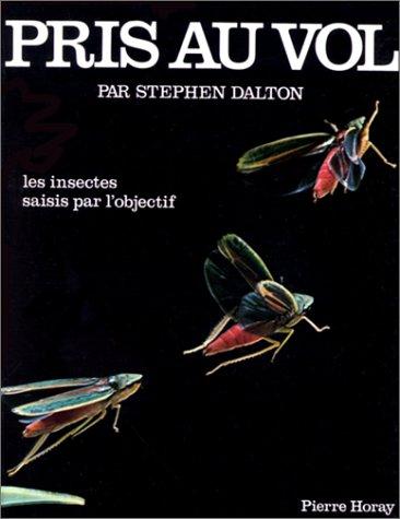 PRIS AU VOL. Les insectes saisis par l'objectif