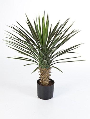 Yucca Palme 75 cm, Kunstpflanze hochwertig, Yucca rostrata Deko-Pflanze wie echt