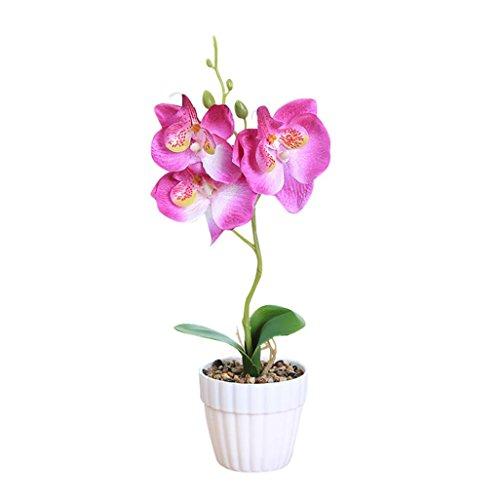 Coloré(TM) Feuille artificielle Trois fleurs papillon orchidée plante Bonsaï Creative Flower Arrangement Accessoires (Violet)