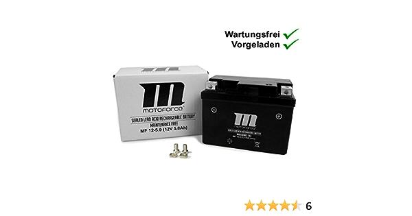 Wartungsfreie Batterie Yt4a 3 5ah Explorer Race Gt50 Formula One Yy50qt 6 Kallio 50 Spin Ge50 Race Gt50 Kallio 50 New Edition Motoforce Auto