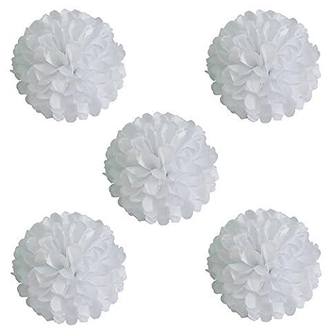 Vlovelife Lot de 10 pompons en papier de soie, fleurs pour guirlandes, décorations pour fête de mariage, d'anniversaire, baby shower - 15,2 cm