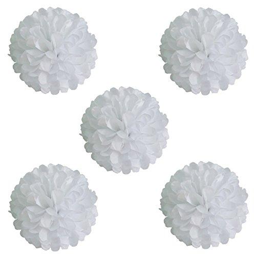 eidenpapier Pom Poms Girlanden aus Papier Papier Kugel Blumen für Hochzeit Party Geburtstag Baby Dusche Dekorationen 10Stück weiß ()