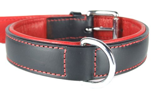 "Plain Padded LEATHER DOG COLLAR :XX Large 24"" - fits neck sizes from 18"" to 22"" (Width 1 1/4"") 1"