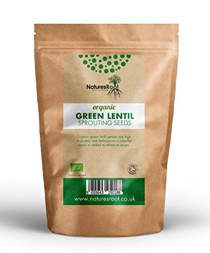 Natures Root Grüne Linsen Sprossen Bio - Linsensprossen | Superfood | Nicht GVO | Microgreen Sprossen (1kg)