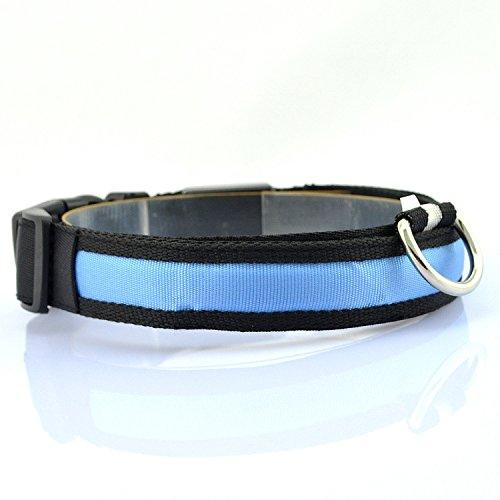 LED Visio Hunde und Katzen Leuchthalsband in 4-Farbes and 4 Farbe - 2