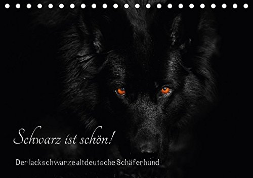 Schwarz ist schön! Der lackschwarze altdeutsche Schäferhund (Tischkalender 2018 DIN A5 quer): Der...