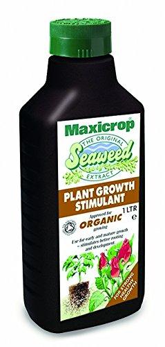 Maxicrop 140210 Organisches Meeresalgen-Extrakt, 1l (Red Meeresalgen)